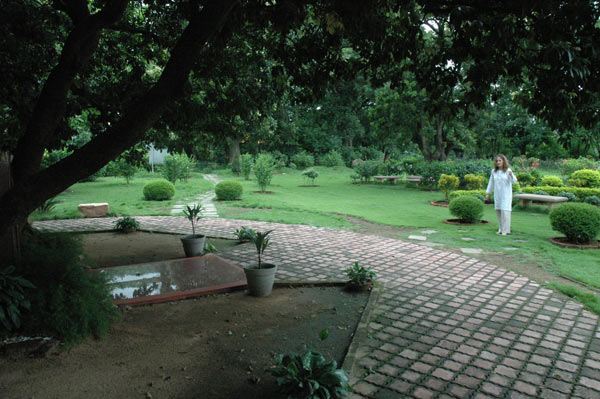 Ranchi: l′albero sotto il quale Yogananda insegnava